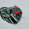 絵の練習 透明水彩