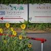 8/30(日)の足跡②~(^^♪