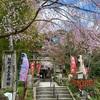 20年3月の熊野若王子のお話。