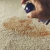 カーペットと内装を掃除する最良の方法