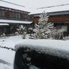 積雪でも安心な日曜日。