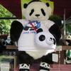 #上野動物園#シャンシャン#サンキューシャンシャン