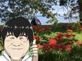 琵琶湖で見た一面の彼岸花。近松おこめの本当は教えたくないスポットを紹介します。