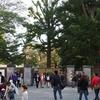 紅葉の始まった新宿御苑を撮ってきた