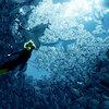 旅ビトは海の世界へ…ABZÛ