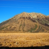 クライストチャーチからトランツ・アルパイン号の旅へ。ニュージーランドの大自然を車窓から望む旅【2016年6月NewZealand旅行記その6】