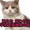 何度でも言う、日本学生支援機構は学生相手の金貸し業者である。