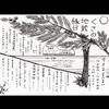 9/2 地蔵縁日@安楽寺