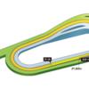 第389R 京都競馬 東海ステークス(GⅡ) 参考データ