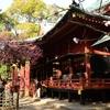 ⛩️東京 根津神社に行ってきました😊