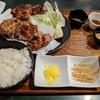 せんざんき(鶏の唐揚げ)が大きくて多くて美味い!媛 故郷味の旅(大阪:西中島南方)