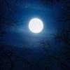 Fly Me to the Moon★フライ・ミー・トゥー・ザ・ムーンをカタカナで歌ってみよう~ジュリーロンドン~