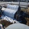 NTT柱移設に伴う作業から始まって、午後は蓮田で穴を掘る。