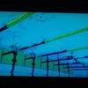 放送動画で、平泳ぎスプリントのキック確認