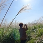 済州島(チェジュ島)秋のおすすめスポット #チェジュの秋を楽しむ旅(東部編)