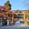 吉田神社の紅葉、見頃や現在の状況。