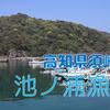 【釣り場調査】高知県須崎市・池ノ浦漁港はどんな釣り場?(漁港)
