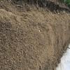 ここならわかる!栽培に適した土の秘密