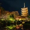 秋の京都@紅葉散策