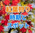 紅葉狩りのおすすめ時期は?関東地方のインスタ映えするスポットとは