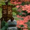 奈良、等彌神社に行ってみました D5600編