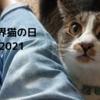 今日も変わらずねこを愛でる。【世界猫の日2021】
