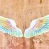 ☆天使の羽☆