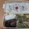 【料理】時間のない残業サラリーマンが奥様に作る、お弁当第三十二弾 青椒肉絲弁当