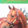 2012.00 Stallion 2012