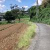 東海道神奈川から甲州街道日野へ歩く(日野往還)その2