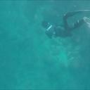 鹿児島お魚遊び