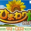 今年は2か所!平町と墨俣のヒマワリ畑を巡る │ 季節の花ジョギング