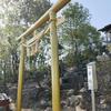 岐阜市野一色『白山比咩神社奥宮』にある金の鳥居。