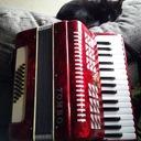 黒猫 サビ猫 毎日が三拍子