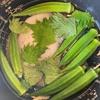 【玄米食】シャイニー薊さんの沼を作る