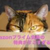 Amazonはプライム会員と一般会員の格差が激しすぎる!お得すぎるプライム会員の特典紹介