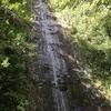ハワイ『マノア渓谷&マノア滝』利用情報+感想*子供とハワイ旅行①