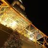 11月26日(月)hatenaより夜の東京タワー。