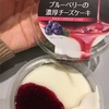トーラク:ブルーベリーの濃厚チーズケーキ