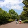 遊具がいっぱい!動物とも遊べる!『小田原こどもの森公園わんぱくらんど』に行ってきました!