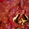 【起源と現在】クリスマスは、キリストの誕生日でしたっけ?