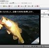 明日(1/17)は亀山ダム(亀山湖) バス釣りと練習