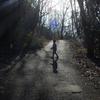 家族散歩、何気ない宝物の時間 〜逆光写真の捉え方