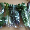 食べチョクで野草多めの野菜セットをお取り寄せ【静岡県】