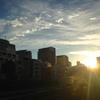 【今週のラーメン1624】 ラーメン大至 (東京・お茶の水) ラーメン+生ビールジョッキ(マルエフ)