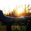 秋ヶ瀬の森バイクロア6で過ごす大満足の休日◎