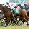 京都牝馬S ダイヤモンドS フェブラリーS result
