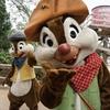 本日の香港ディズニーランド / Today's Hong Kong Disneyland