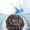 北極圏の海 を 360写真で体感してみる #360pic