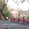 埼玉の一宮神社その3 氷川女体神社に参拝しました。
